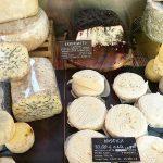 イタリアのチーズ
