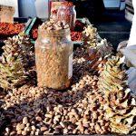 市場で見かけた殻付き?の松の実