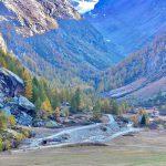 Il Parco Nazionale del Gran Paradiso è una delle zone naturalistiche protette più importanti e più grandi dell'Italia.