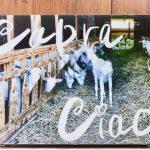 ・Capra Ciao